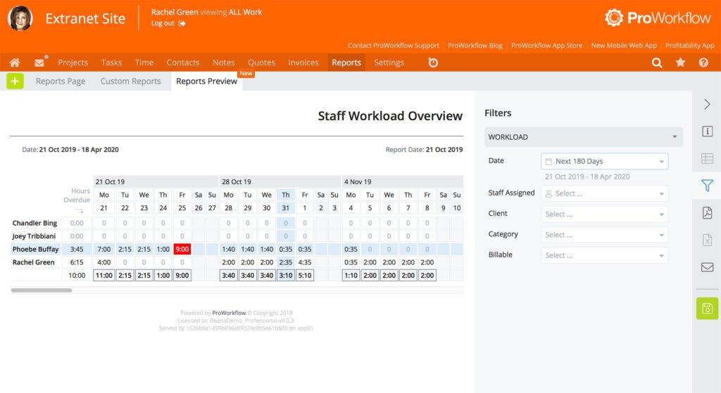 Screenshot Staff Workload Overview Report